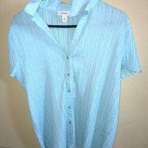 Light blue Textured Blouse